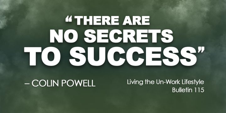 There are no secrets to success.
